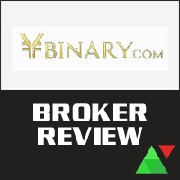 Ybinary Review (Japanese Version)